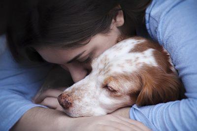 adopt older pet